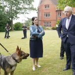 'Weird and gimmicky': police chiefs condemn Boris Johnson's crime plan